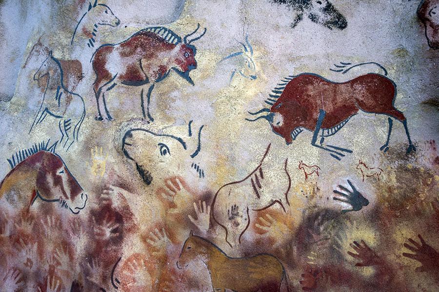 Bison History